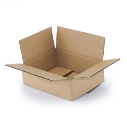 1-wellige Schachtel 20x15x6 cm